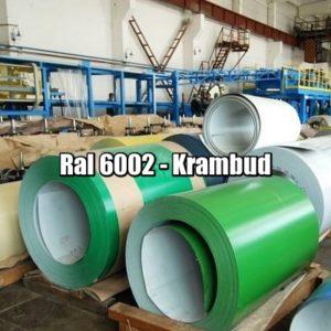 цена Рулонная сталь 6002 Ral - плоский гладкий лист с полимерным покрытием
