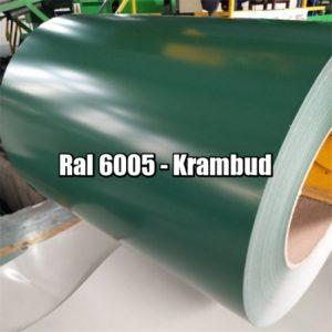 Рулонная сталь 6005 Ral - плоский гладкий лист с полимерным покрытием цена