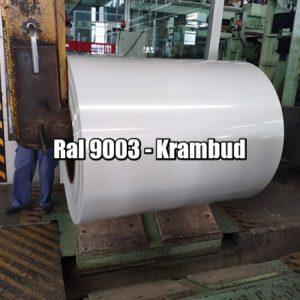 цена Рулонная сталь 9003 Ral - плоский гладкий лист с полимерным покрытием