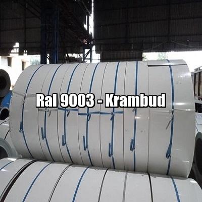 цена Штрипс — 625 416 — RAL 9003 — штрипсованный плоский лист